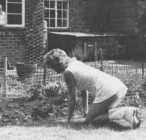 gardening in a white tennis outfit with panties showing