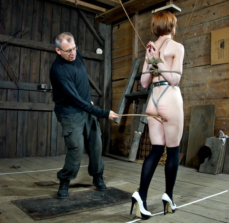 training Hazel Hypnotic