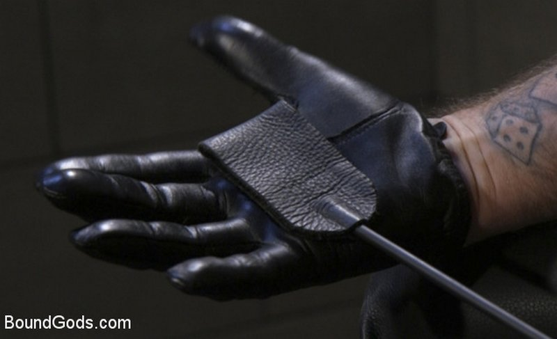 leather glove and riding crop
