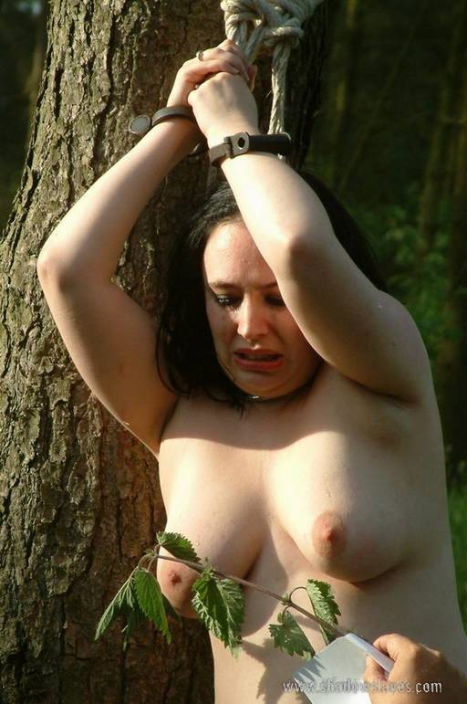 woman bound with her hands over her head as her naked breasts are rubbed with stinging nettles