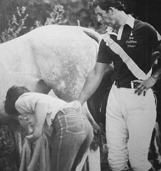 prince charles lustfully looking at a spankable ass