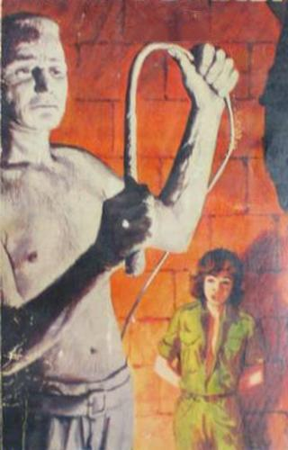 whip scene from the cover of a pulp novel