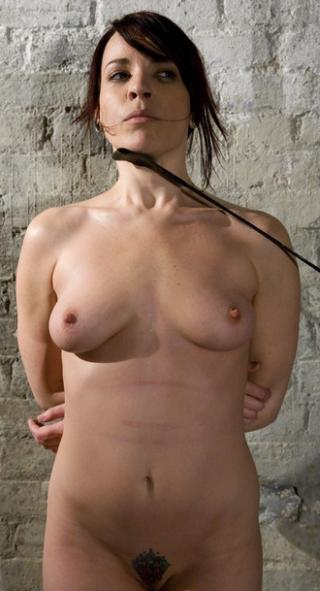 riding crop for posture training