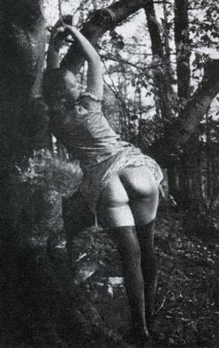tied and switched in the woods outside 1920s berlin